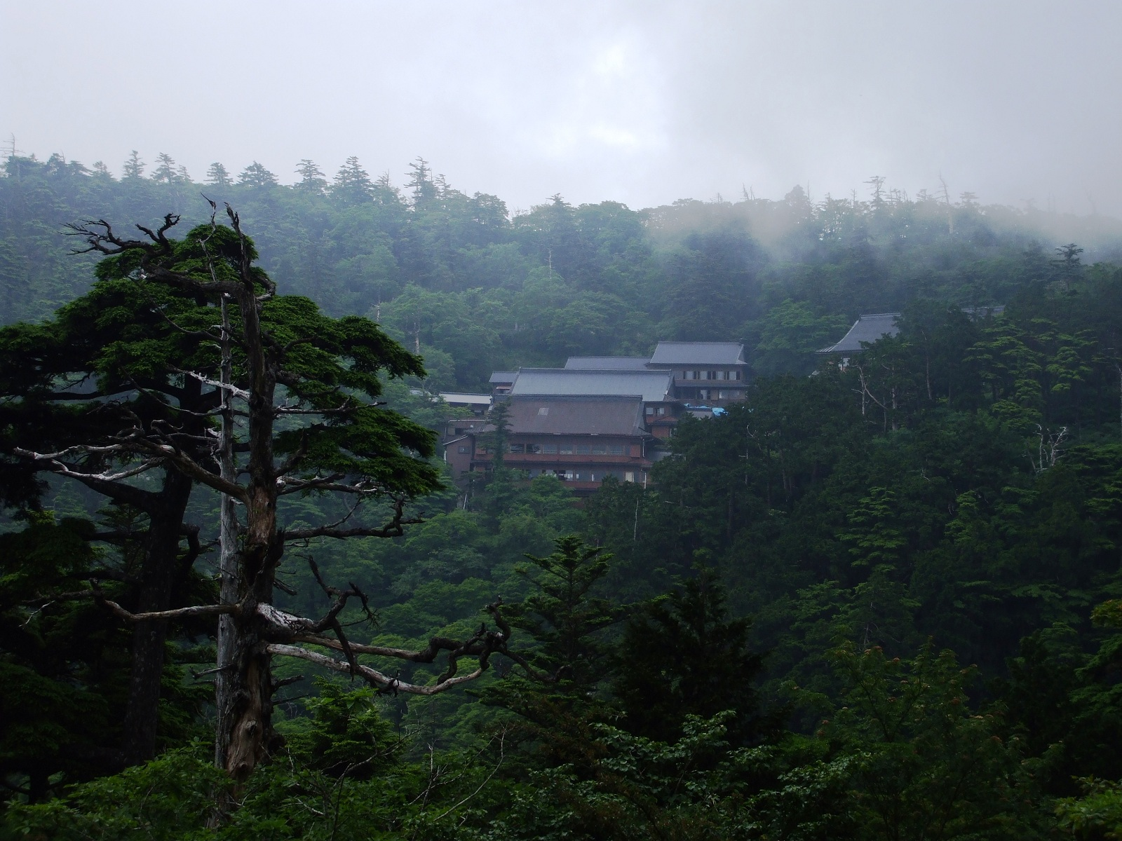 Select holiday mount omine japan asia mist over the mountain