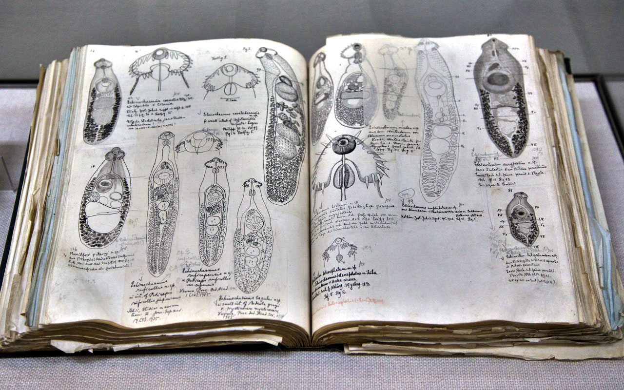 Strangest Museums, Museum of Parasites, Tokyo, Japan, Old medical book