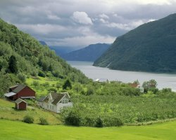 Norway, Europe, Sognefjord overview