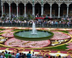 Grote Markt, Brussel, Belgium, Flower Carpet and fountain