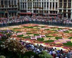 Grote Markt, Brussels, Belgium, Flower Carpet event time