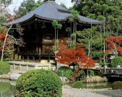 Romantic Holiday, Kyoto, Japan, Seiryo temple