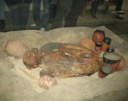 British Museum, London, England, Mummified body