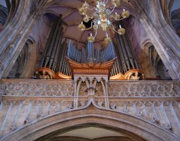 St Stephan Cathedral, Vienna, Austria, Organ view