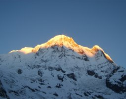 Tallest Mountains, Annapurna, Nepal, Himalaya, Golden peak morning